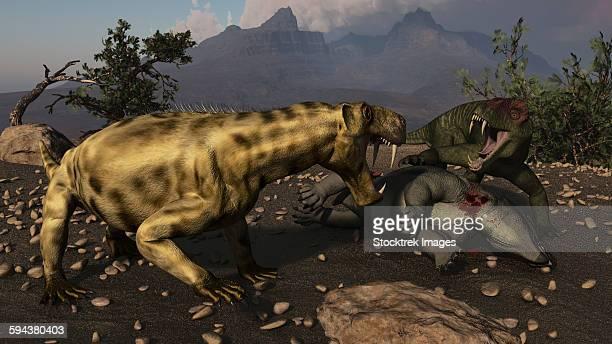 ilustraciones, imágenes clip art, dibujos animados e iconos de stock de inostrancevia moving in on a kill made by a doliosauriscus. - animal extinto