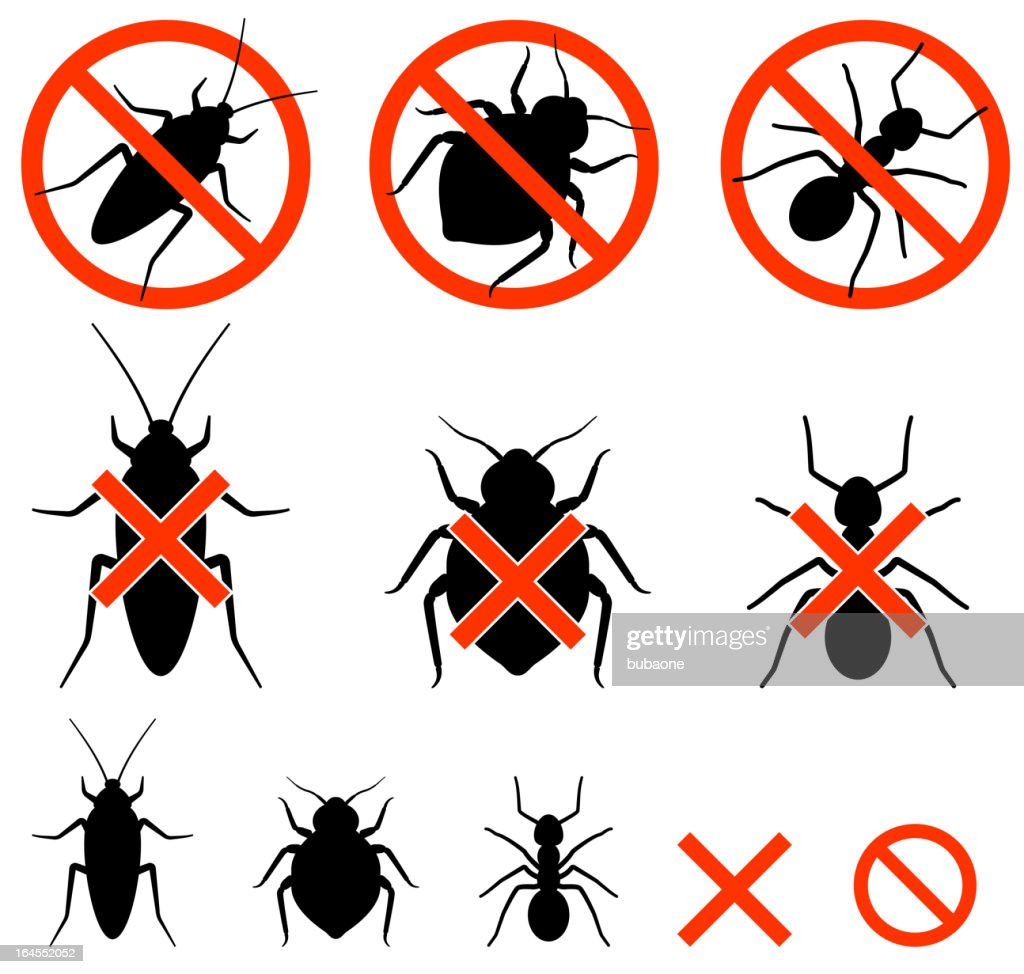 Insect extermination black and white royalty free vector icon set