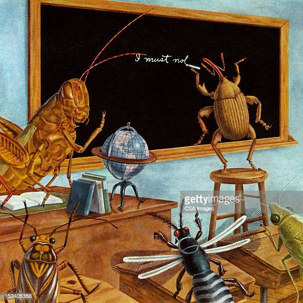 Insect School