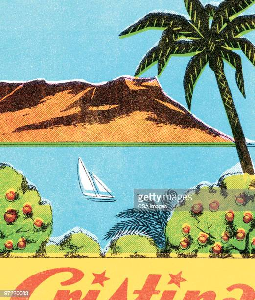 island view - pacific islands stock illustrations