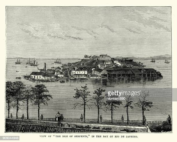 ilustrações, clipart, desenhos animados e ícones de ilha das serpentes, rio de janeiro, brasil, século xix - século xix