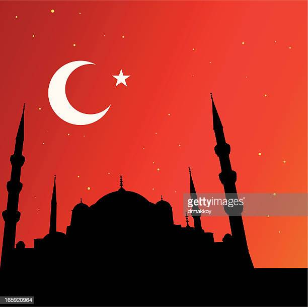 istanbul and mosques - minaret stock illustrations