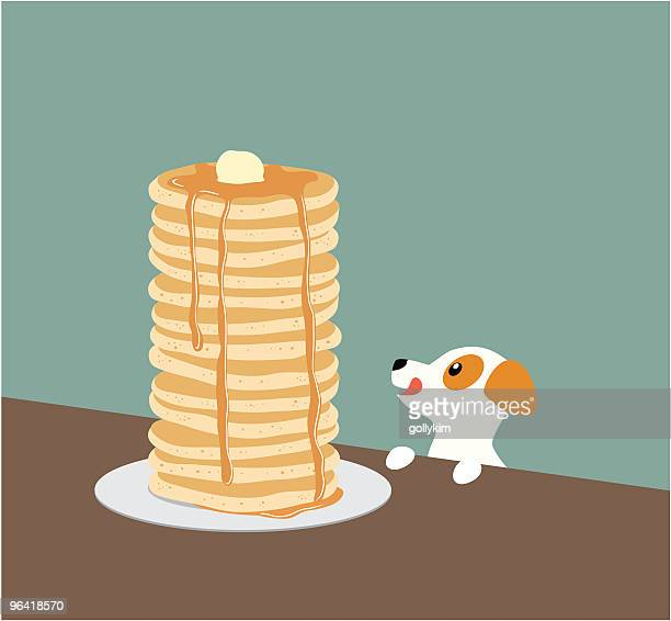 Jack Russell Terrier with Pancakes