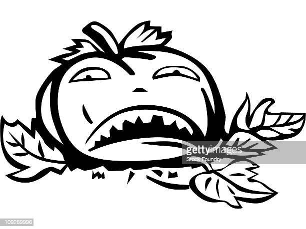 a jack-o-lantern on leaves - plant attribute stock illustrations, clip art, cartoons, & icons
