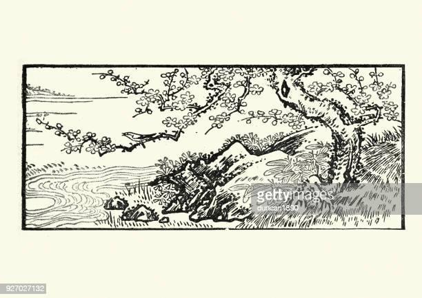 illustrations, cliparts, dessins animés et icônes de art japonais, paysage avec arbre de la cerise, xixe siècle - cerisier japonais