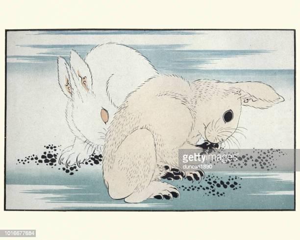 illustrations, cliparts, dessins animés et icônes de japanesse art, lièvres de hokusai - estampe japonaise