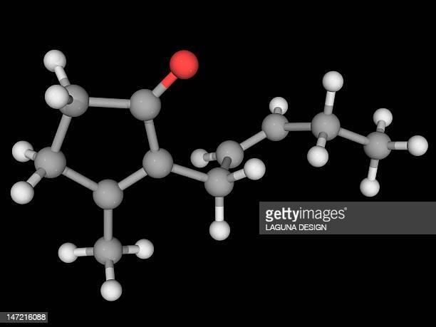 Jasmone molecule