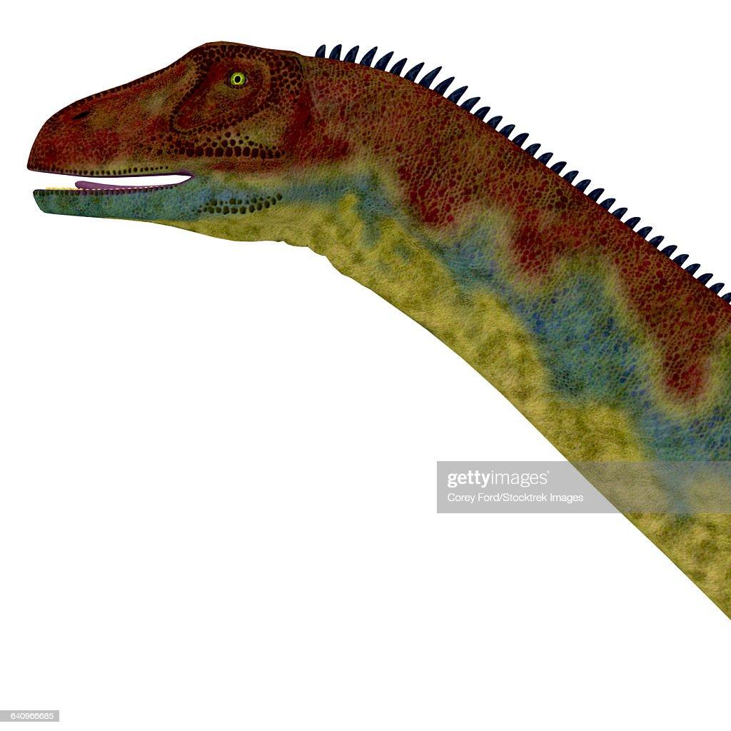 Jobaria dinosaur portrait. : Ilustración de stock