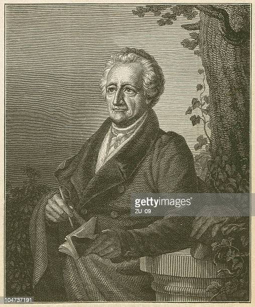 johann wolfgang von goethe (1749-1832), wood engraving, published in 1879 - report stock illustrations