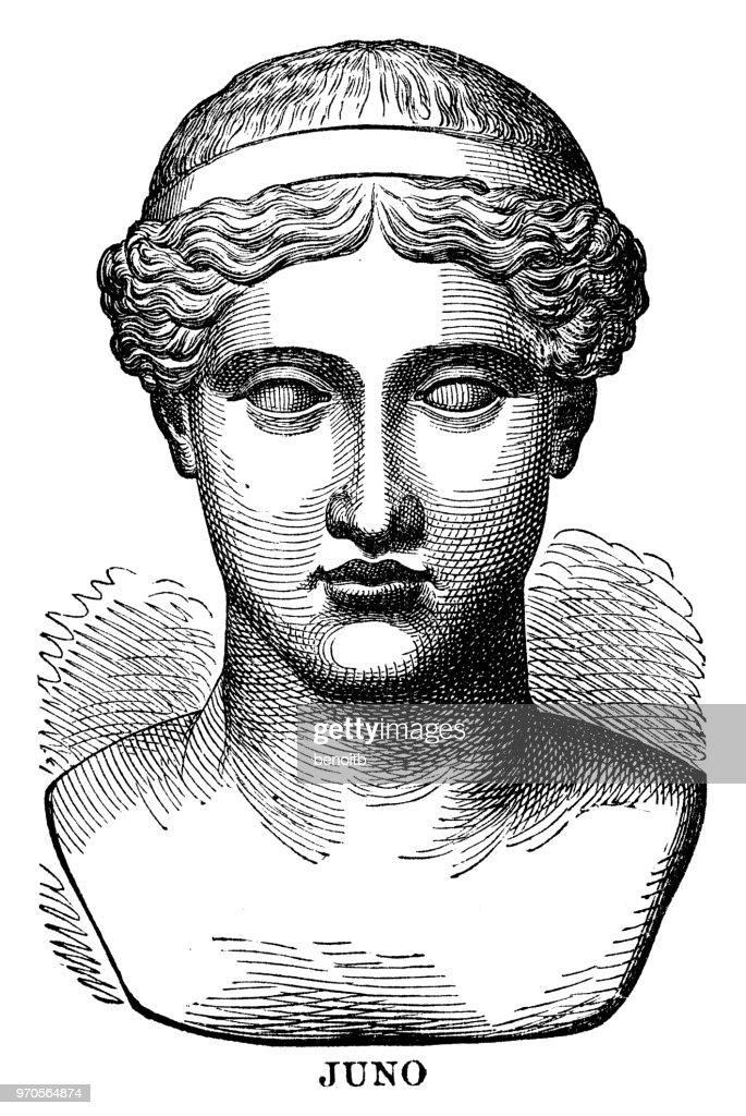 Juno, roman goddess : stock illustration