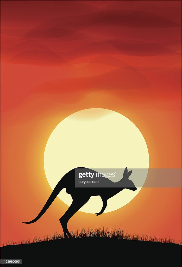 Kangaroo silhouette background