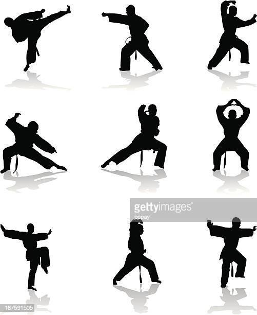 Karate silueta