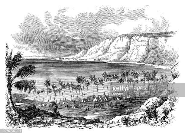kealakekua bay in hawaii - pacific ocean stock illustrations, clip art, cartoons, & icons