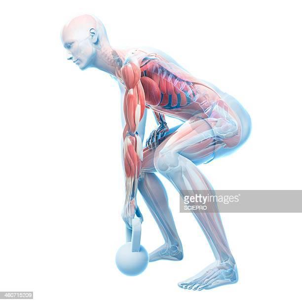 Kettlebell workout, artwork