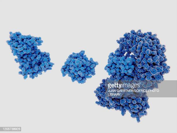 stockillustraties, clipart, cartoons en iconen met nek7 kinase binding to nrlp3 inflammasome, molecular model - ziekte van alzheimer