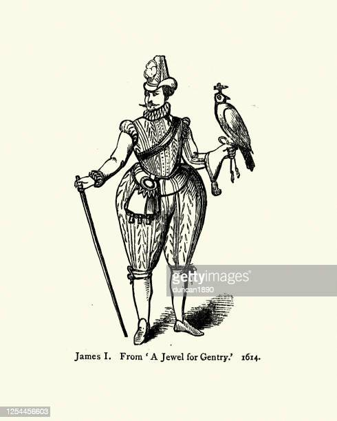 king james i, holding a falcon, 17th century - 1600s stock illustrations