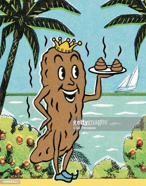 king poop - feces stock illustrations, clip art, cartoons, & icons