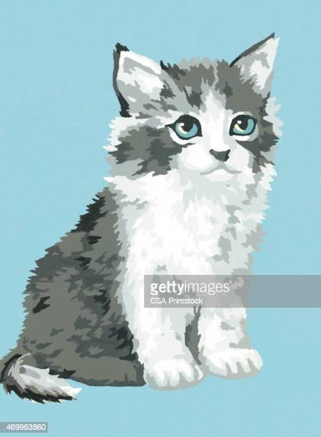 60点の子猫のイラスト素材クリップアート素材マンガ素材アイコン