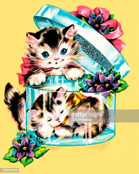 Gatinhos numa caixa