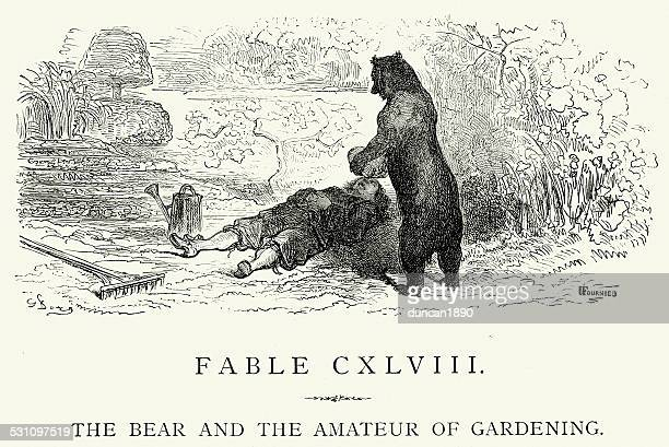 la fontaine's fables -  bear and the amateur of gardening - landscape gardener stock illustrations, clip art, cartoons, & icons