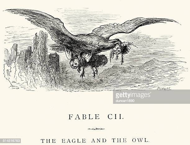 la fontaine's fables - eagle and the owl - animals hunting stock illustrations