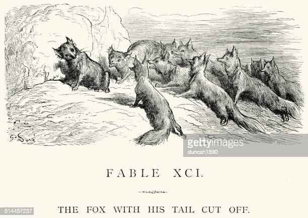 La Fontaine's Fables - Fox with his tale cut off