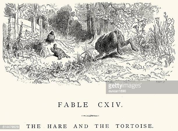 ilustraciones, imágenes clip art, dibujos animados e iconos de stock de la fontaine las fábulas la liebre y la tortuga - tortugas