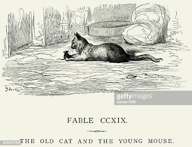 la fontaine's fables - old cat and the young mouse - pests stock illustrations