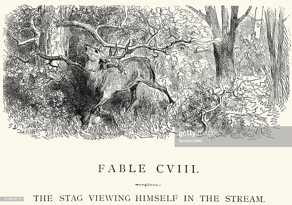 La Fontaine's Fables - Stag viewing himself in the Stream : stock illustration