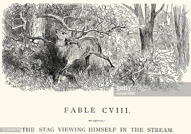 La Fontaine's Fables - Stag viewing himself in the Stream