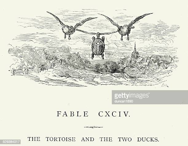 la fontaine's fables - tortoise and the two ducks - woodcut stock illustrations, clip art, cartoons, & icons