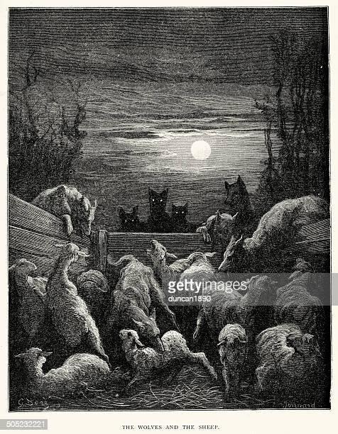 la fontaine's fables - wolves and the sheep - agression stock illustrations, clip art, cartoons, & icons