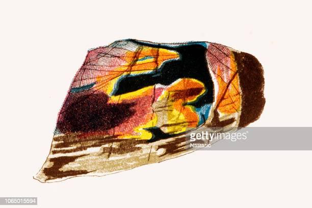 Labradorite mineral stone