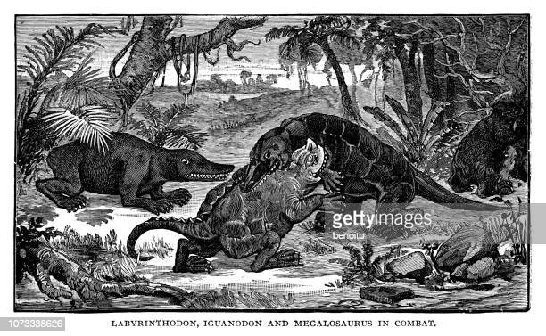 Labyrinthodon, iguanodon and megalosaurus in combat