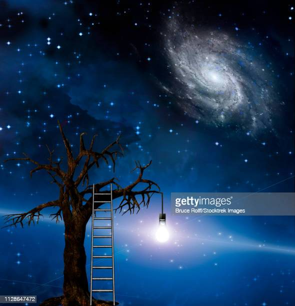 ladder leans on tree of wisdom. - milky way stock illustrations