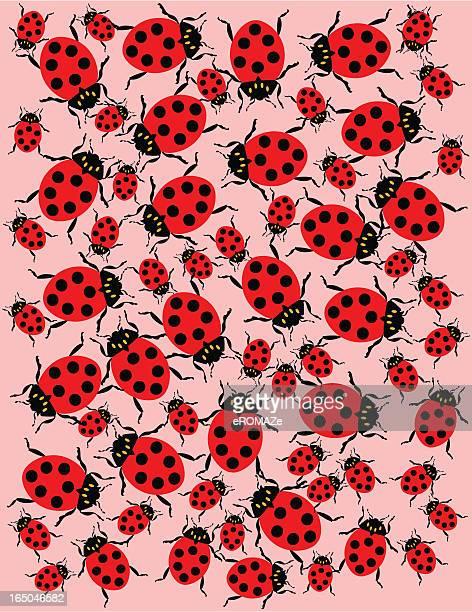 ladybug frame - infestation stock illustrations, clip art, cartoons, & icons