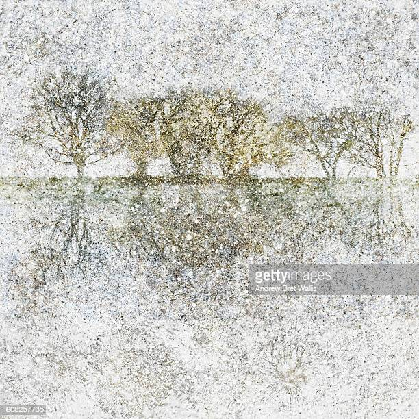 lakeside winter trees against a snow filled sky - head above water stock illustrations