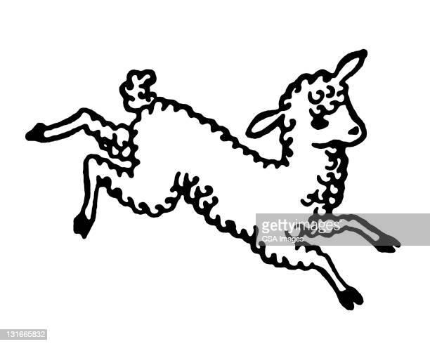 lamb jumping - sheep stock illustrations, clip art, cartoons, & icons