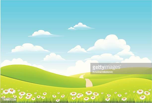 ilustraciones, imágenes clip art, dibujos animados e iconos de stock de paisaje - campo