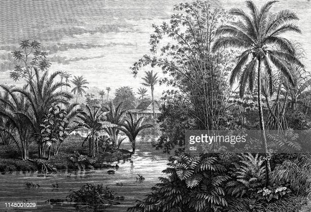 landscape in the javanese lowlands - rainy season stock illustrations, clip art, cartoons, & icons