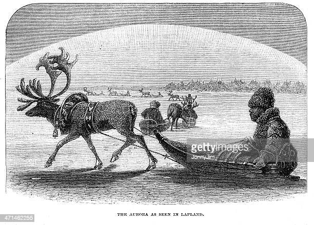 laplander in reindeer sleigh aurora borealis from 1880 journal - aurora borealis stock illustrations