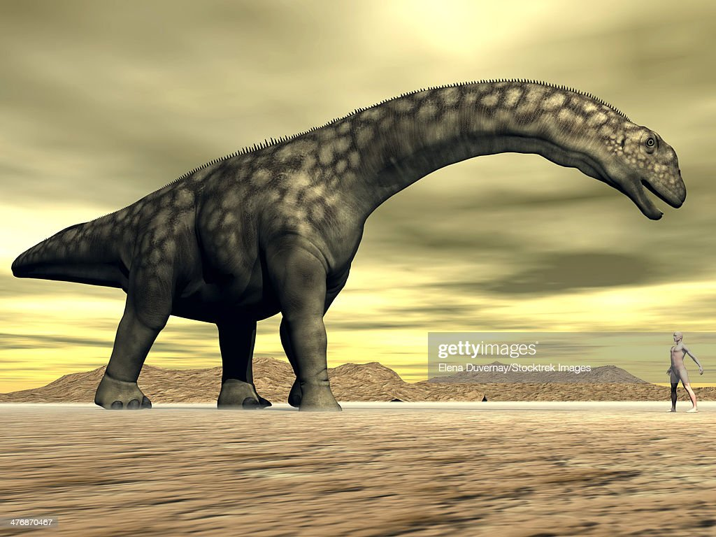 Large Argentinosaurus dinosaur face to face with a human in the desert. : stock illustration