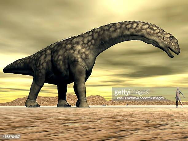 Large Argentinosaurus dinosaur face to face with a human in the desert.