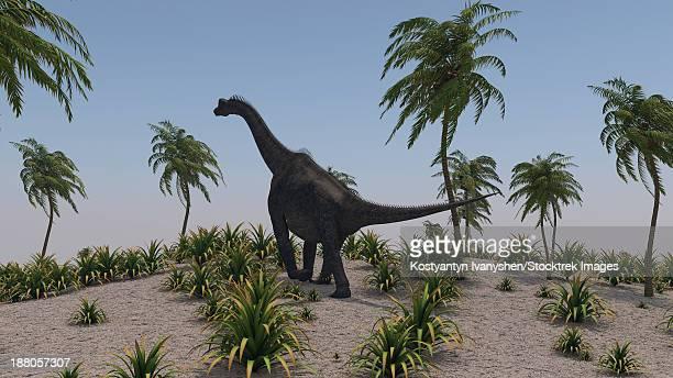 Large Brachiosaurus roaming a prehistoric environment.