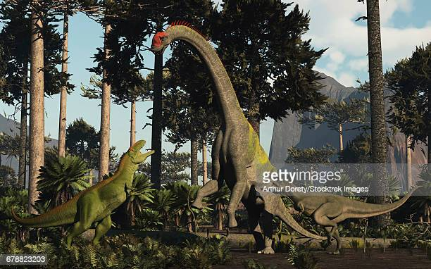 ilustraciones, imágenes clip art, dibujos animados e iconos de stock de a large chubutisaurus is a attacked by a pair of tyrannotitans in the early cretaceous of south america. - jurásico