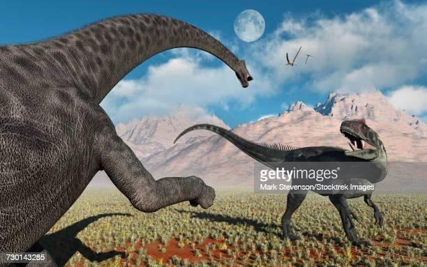 A large Diplodocus dinosaur confronting a, Allosaurus.