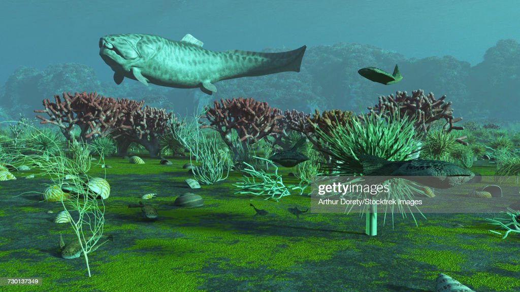 A large Dunkelosteus and other armored fish in an aquatic Devonian scene. : stock illustration