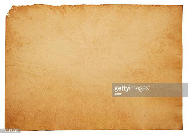 large isolated blank old aged parchment papyrus grunge paper texture - papyrus paper stock illustrations