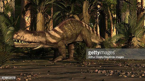 A large mid Triassic reptile called Prestosuchus moves through the brush.