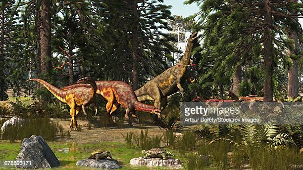 A late Triassic scene with Plateosaurus and Liliensternus dinosaurs.